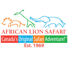 African-Lion-safari