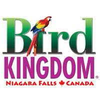Bird-Kingdom